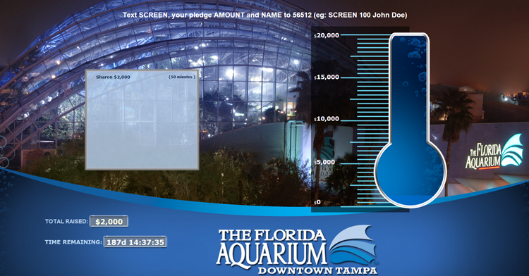 Screencasting-Florida-Aquarium.png